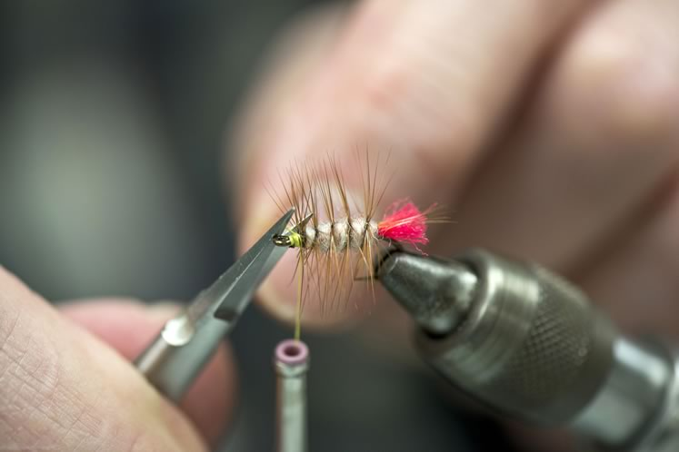 Fly fisher Brian Vickery ties a Woolly Worm at a recent meeting of the Headwaters Fly Fishing Club. Photo by Pete Paterson.