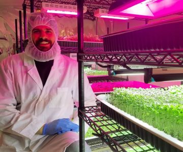 Jonathan McCausland in the grow area of Mansfield's Big Thunder Farms with a brassica blend microgreens crop. Photo by Joseph McCausland.
