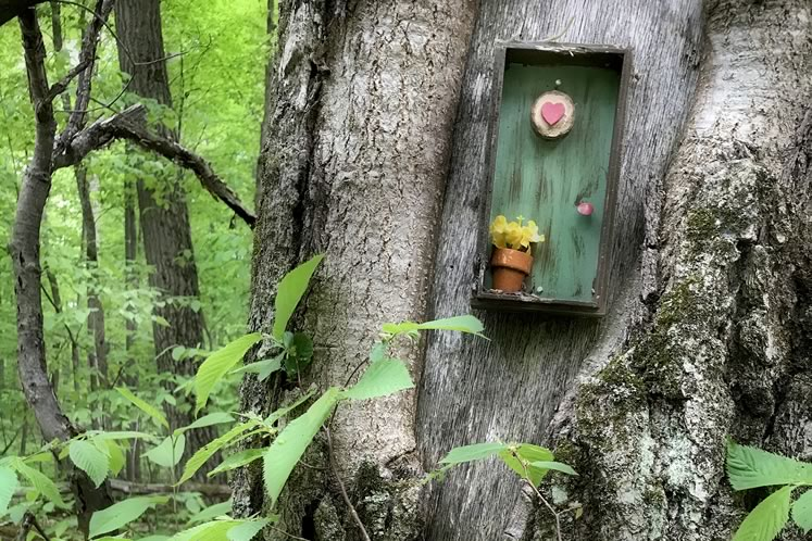 Just when we could use a dose of whimsy, magical miniature abodes have sprung up in local forests. Photo by Rosemary Hasner / Black Dog Creative Arts.
