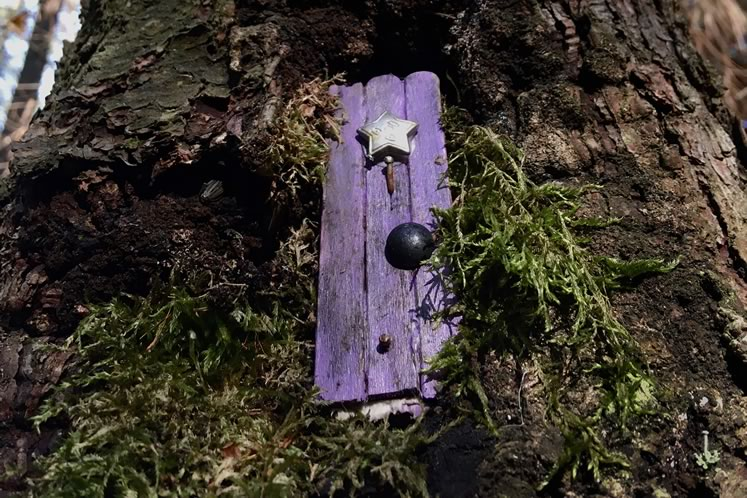 Keen eyes can spot a variety of fairy abodes secreted along the pathways in Palgrave and Dufferin Forests. Photo by Rosemary Hasner / Black Dog Creative Arts.