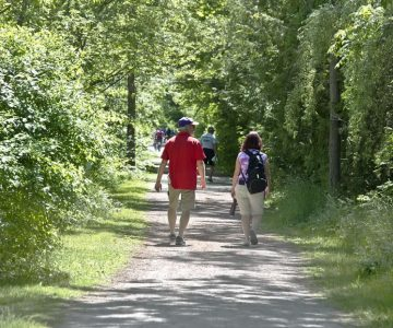 Our Hiking 101 guide to hiking in Caledon and Dufferin.