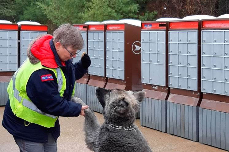 On her last day as a rural mail carrier, Connie Tersigni bade farewell to Beau, who would miss his treats. Photo by Bernie Rochon.
