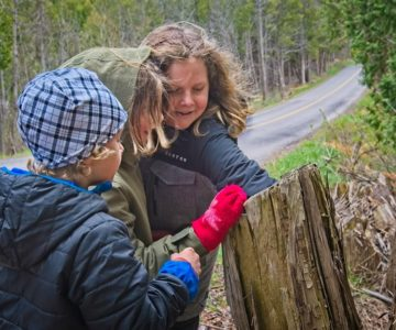 From left, brothers Leif, Waverly and Xavier discover a cache in a hollowed out tree trunk. Photo by Fred Webster.