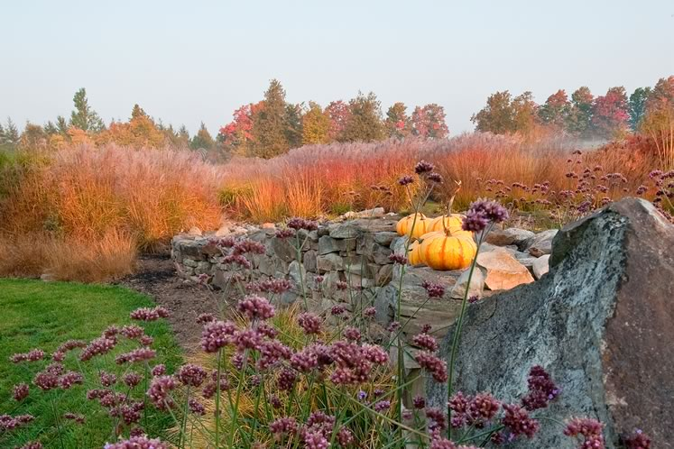 Against a backdrop of shimmering orange-gold grasses, plump squashes add a note of seasonal whimsy to the sweeping stone wall on the north-east side of the garden. Photo by Rosemary Hasner / Black Dog Creative Arts.
