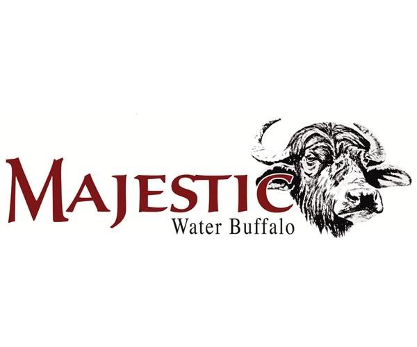 Majestic Water Buffalo